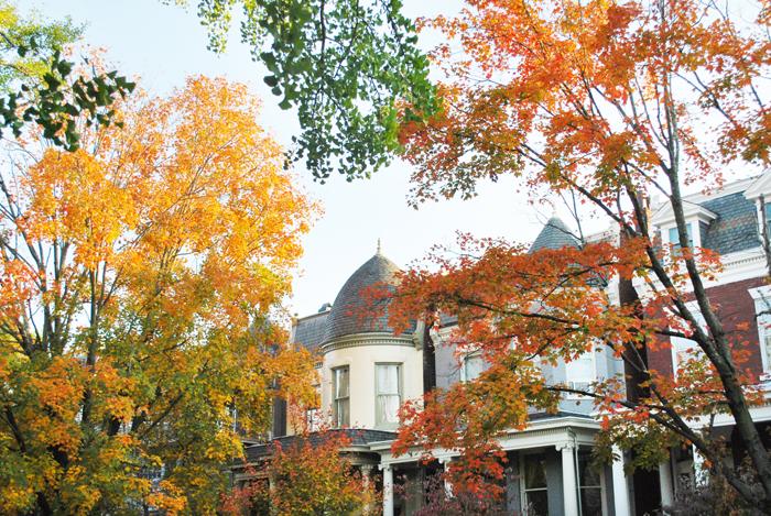 Fall in The Fan, Richmond