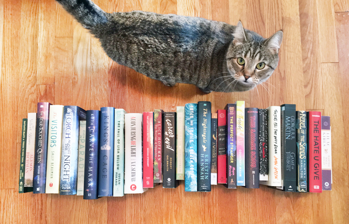 Em Busy Living's 2017 Reads Roundup
