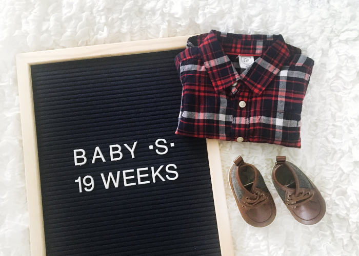 Baby S - 19 Weeks | Em Busy Living